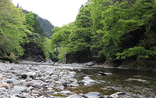 荒川源流で川遊び