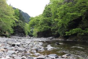 キャンプ場下の河原